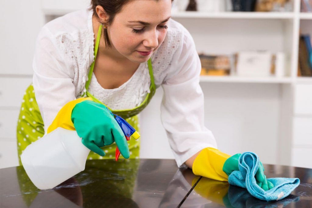 vancouver cleaning services