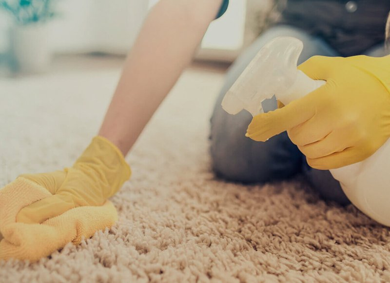 Vancouver professional carpet cleaner